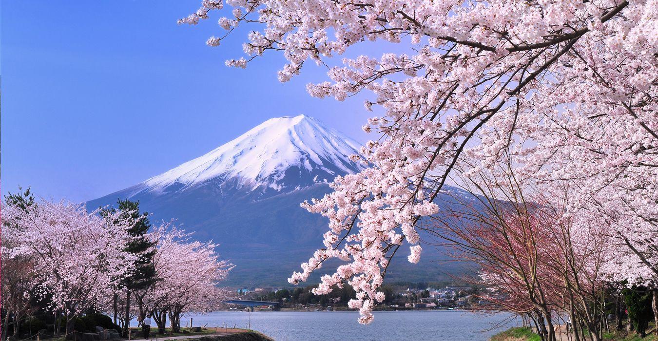 NHẬT BẢN TẾT NGUYÊN ĐÁN 2020 - TOKYO - PHÚ SĨ - FUJITEN TRƯỢT TUYẾT - NAGOYA - KYOTO - OSAKA